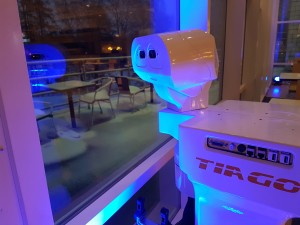 TIAGo robot watching the snow