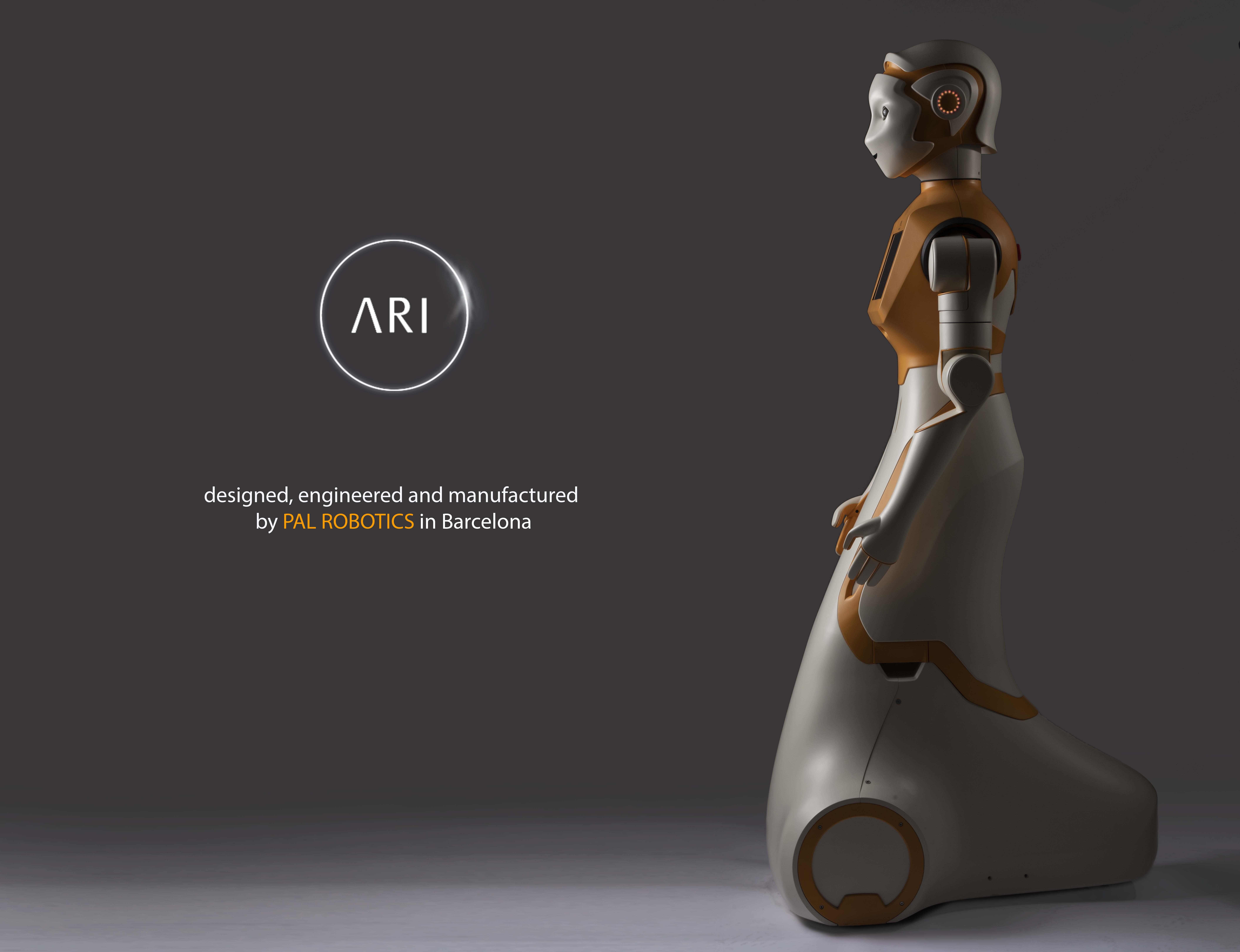 Meet ARI: Service Robotics and Artificial Intelligence in One Single Platform